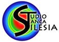 Studio Tańca Silesia